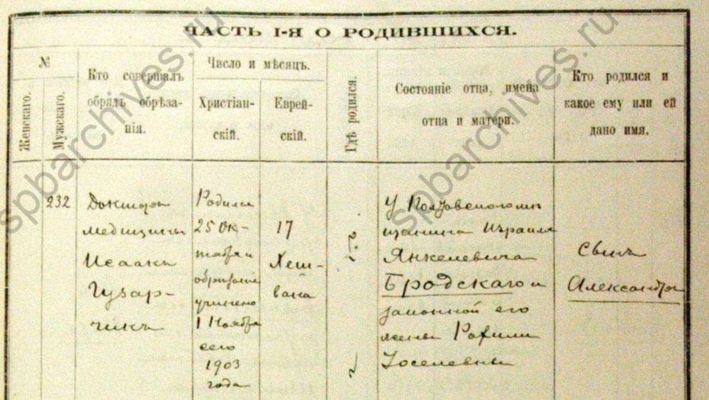 Метрическая запись о рождении Александра, 1903 г.